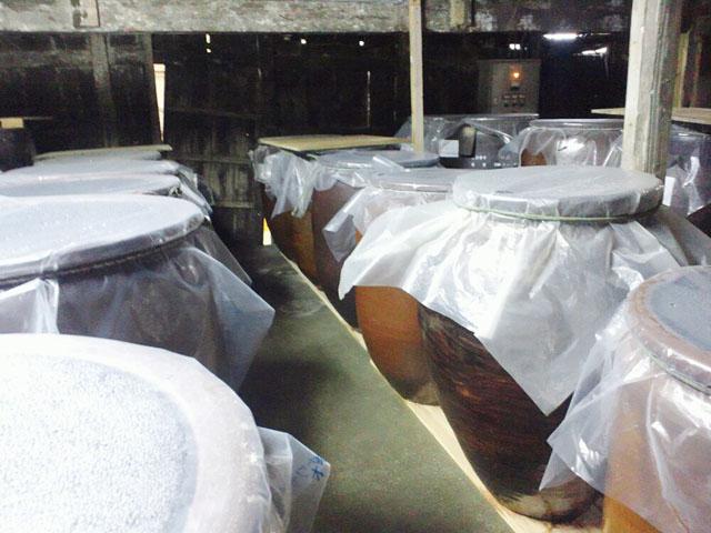 泡盛を貯蔵するカメの並んだ工場の中の写真
